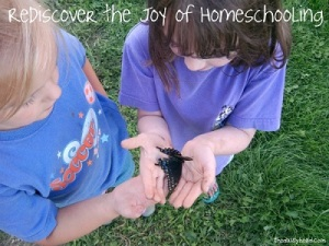 Redisicover the Joy of Homeschooling with The Daisyhead